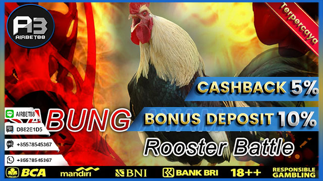 Link Alternatif Sabung Ayam